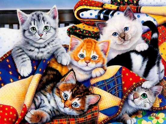 Картина 30x40 Котята в покрывале